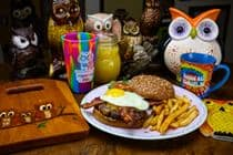 Early Owl Brunch Burger